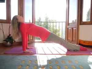 Upward Plank Pose