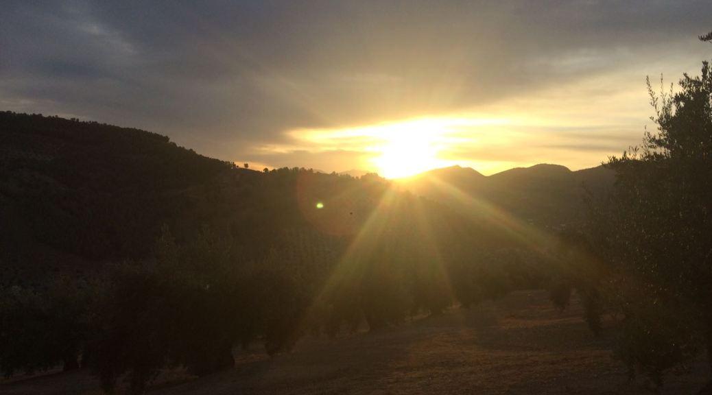 Landscape of Las Salinas